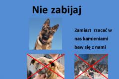 Projekt Plakat społeczny - 03.2016